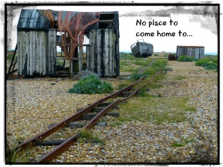 dungeness-509979_1920